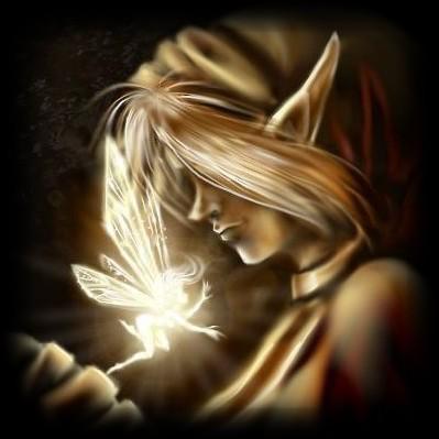 L'envole des Elfes  dans Litterature avjn5tj2